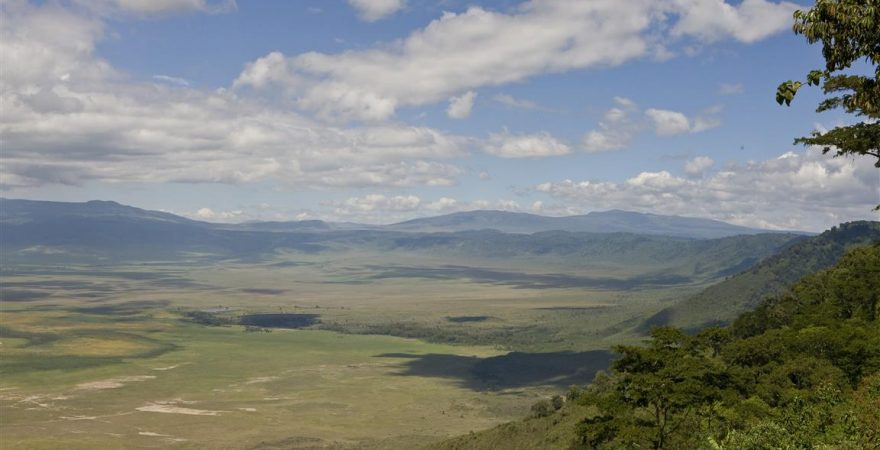 Ngorongoro Conservation Area (5)