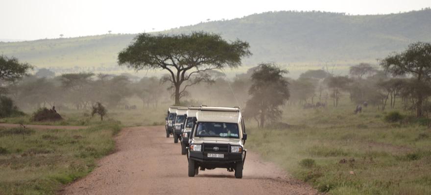 wildlifesafaris3