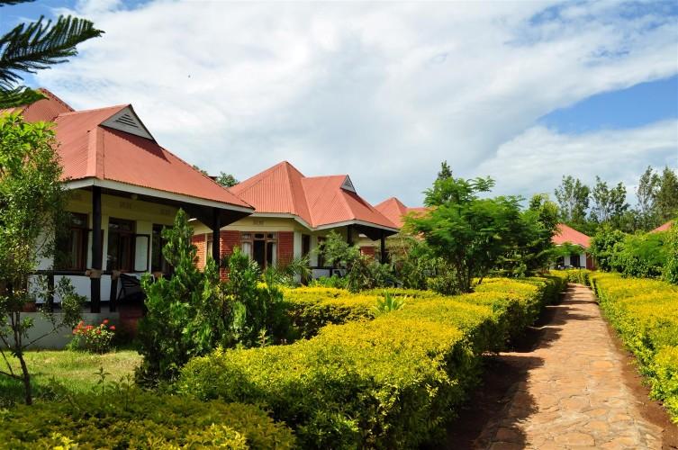 Bougainvillea Safari Lodge Leopard Tours Tanzania