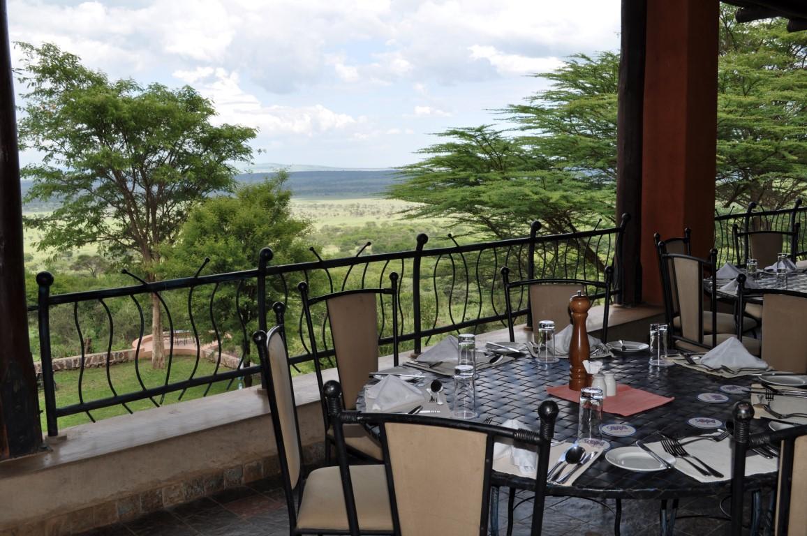 Serengeti Sopa Lodge Leopard Tours Tanzania
