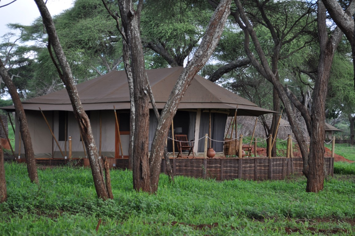 Swala Camp Sanctuary Lodges Leopard Tours Tanzania
