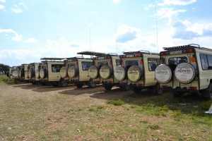 Safari Vehicles (7)