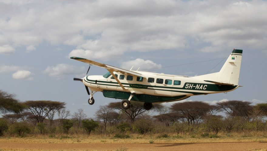safari airlink1