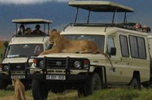 safarismenu