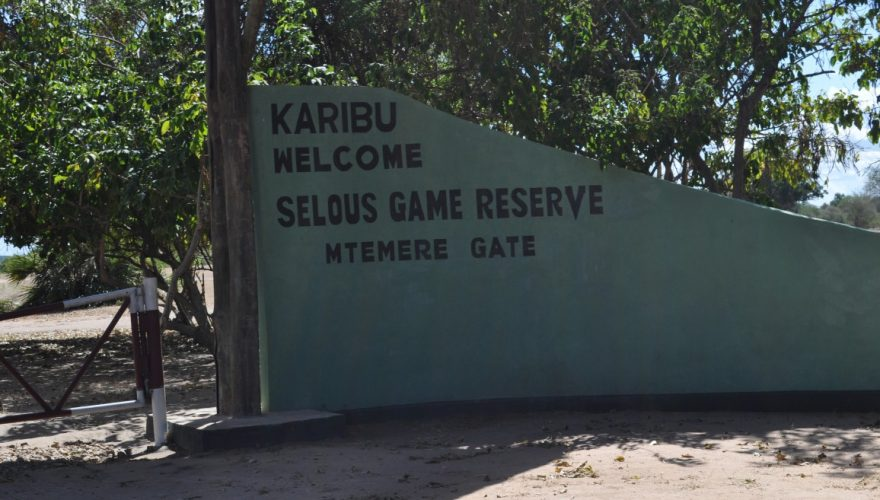 Selous Game Reserve (12)
