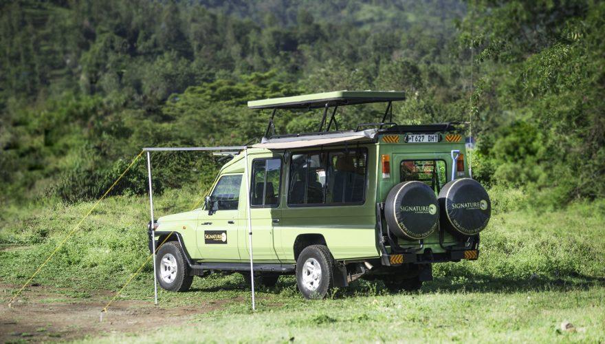 Signature Vehicle (Large)