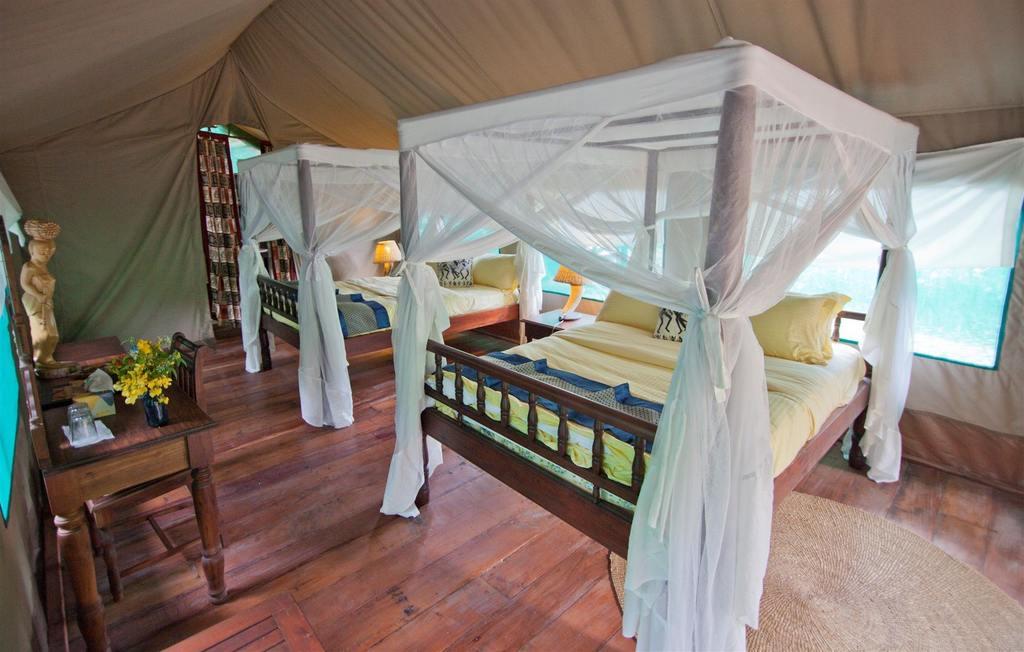 Safari Guide In Gombe Stream National Park in Tanzania 2021