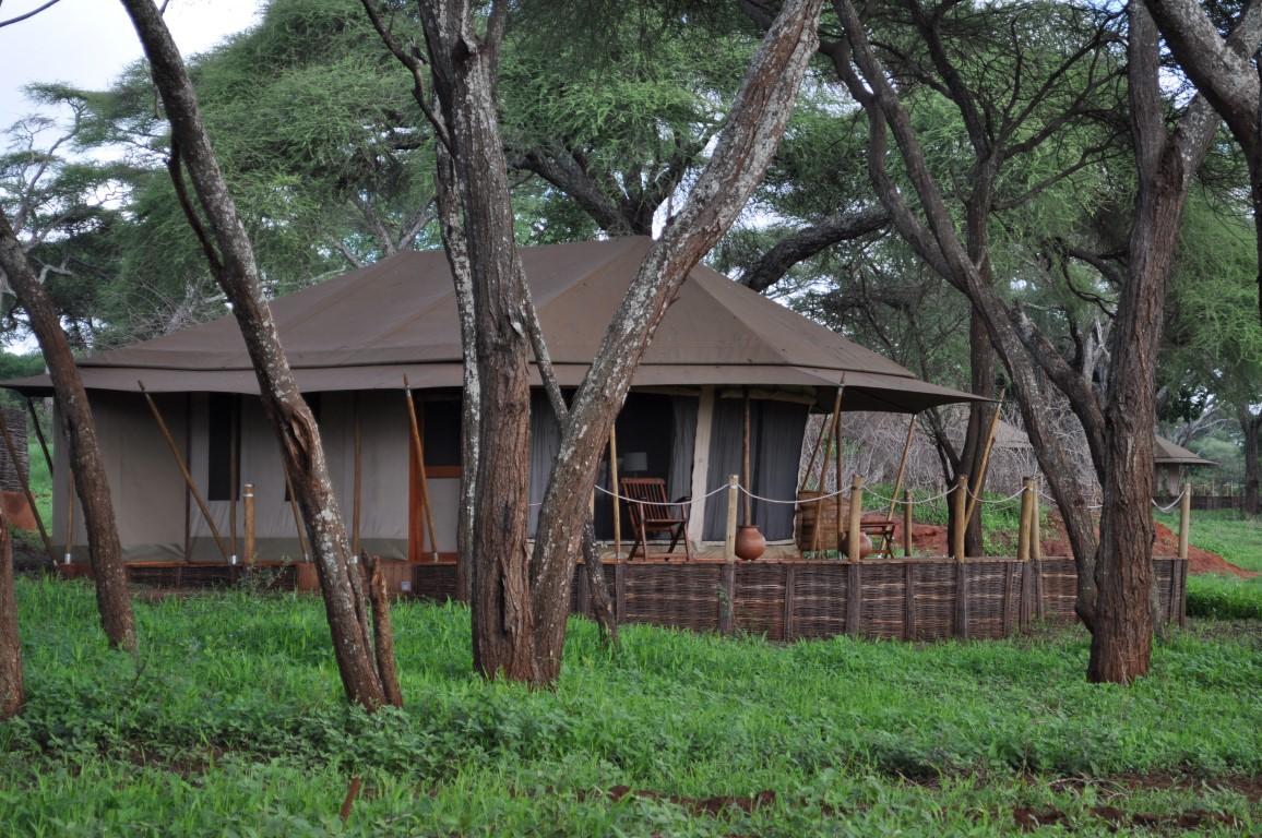 Swala Camp Sanctuary Lodges Leopard Tours Tanzania