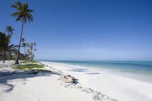 Beach Leisure Zanzibar (9)