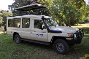 Safari Vehicles (3)