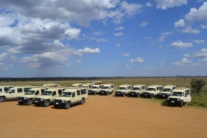 Safari Vehicles (6)