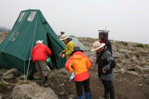 Mt Kilimanjaro (4)