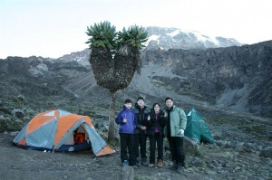 Mt Kilimanjaro (5)