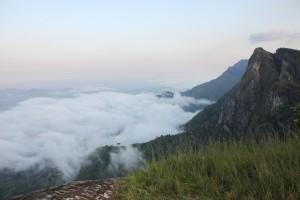 Usambara Mountain Tanzania (4)