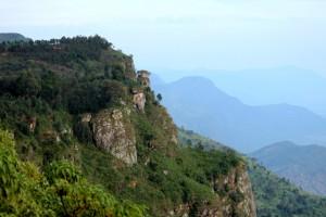 Usambara Mountain Tanzania (5)