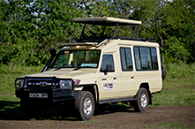 Classic Vehicle 1